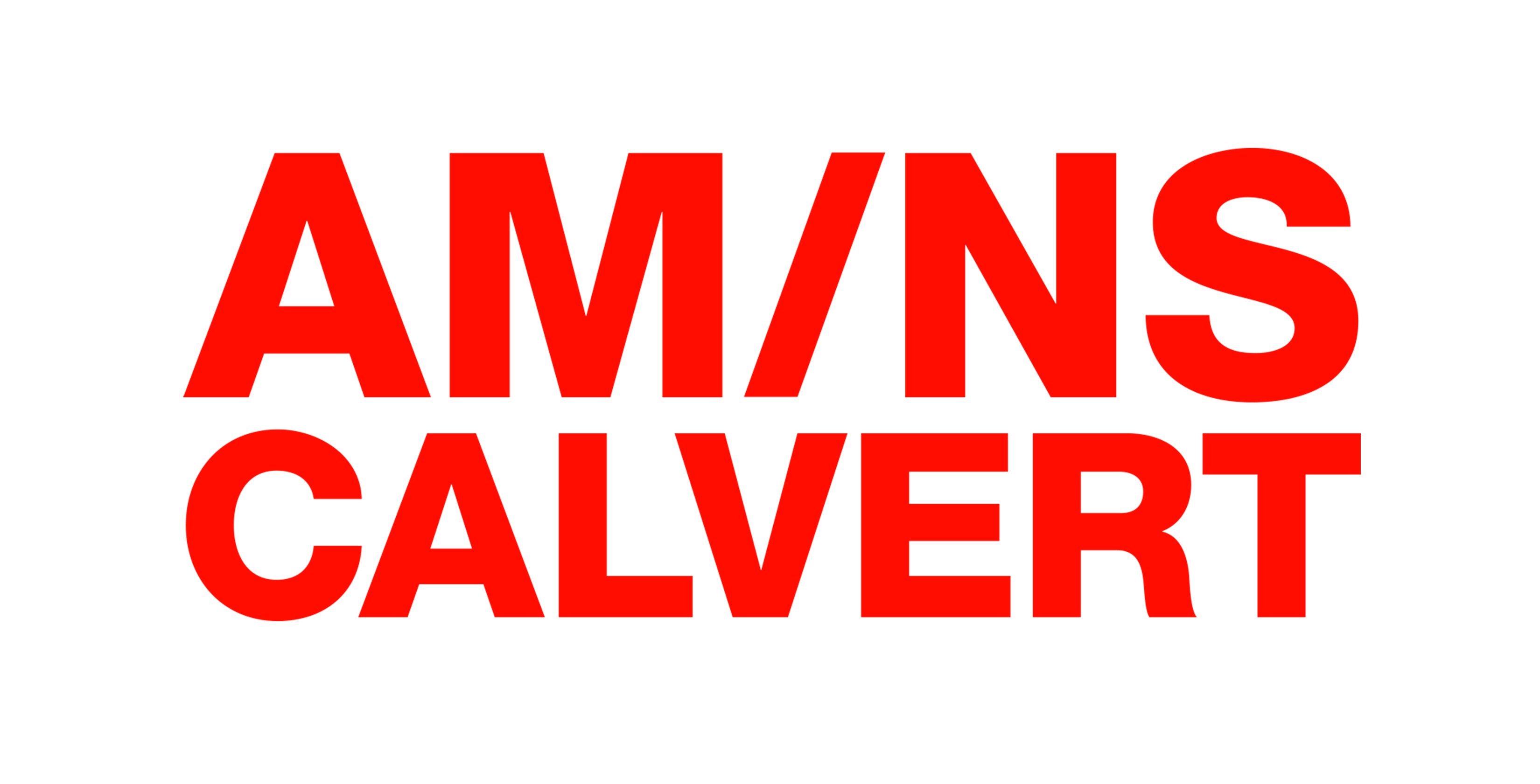 AMNS Logo_JPEG